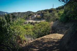 Glendale's new Catalina Verdugo Trail