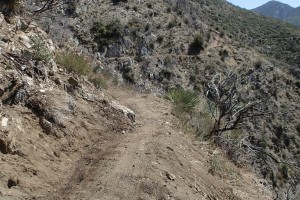 Restored Strawberry Peak trail