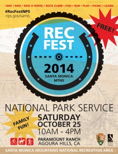 Rec-Fest-Poster (1)