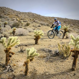 A classic long-distance desert ride