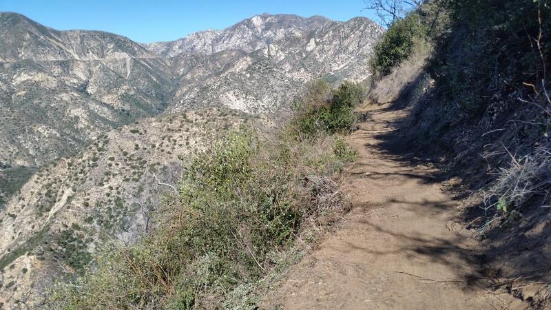 Ken Burton Trail Restoration